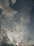 龍のようなうろこ雲