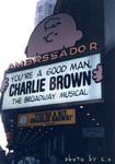 君はいい人チャーリー・ブラウン